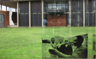 Image is of a see-through panel with grass and a building in the backround. The panel describes women's experiences. Four women are pictured at the bottom of the panel. The picture was taken at the courtyard of constitution hill.