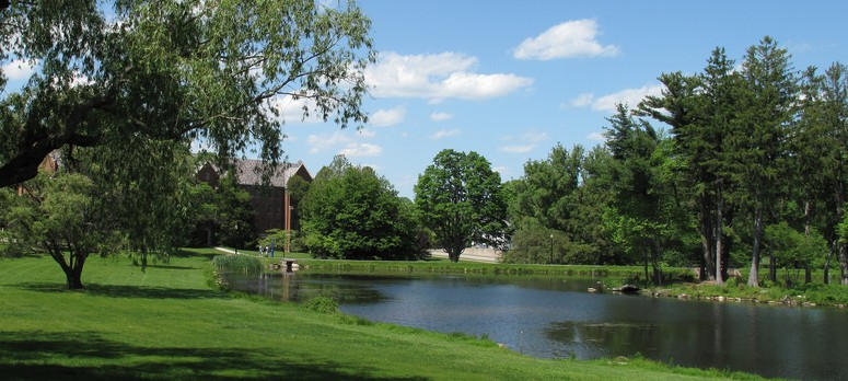 Image is of Mirror Lake, a body of water located next to Storrs Road. The left side of the photo shows green grass and two trees.
