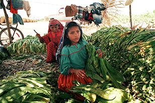 Image a picture depicting child labor